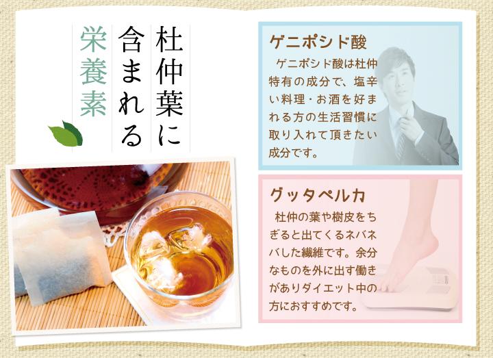 杜仲葉茶に含まれる栄養素。ゲニポシド酸…ゲニポシド酸は杜仲特有の成分で、塩辛い料理・お酒を好まれる方の生活習慣改善に取り入れて頂きたい成分です。グッタペルカ…杜仲の葉や樹皮をちぎると出てくるネバネバした繊維です。余分なものを外に出す働きがありダイエット中の方におすすめです。